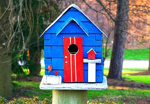 Birdhouse 030