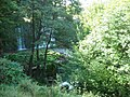 Bistritsa river 1.JPG