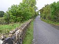 Boghill Road - geograph.org.uk - 1515489.jpg