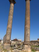 Bosra via colonnataHPIM3301.JPG
