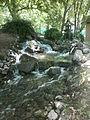 Botanička bašta Jevremovac 058.JPG
