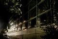 Botanischer Garten Graz bei Nacht.tif