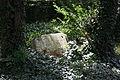 Brühl (Rheinland) Jüdischer Friedhof 156.JPG