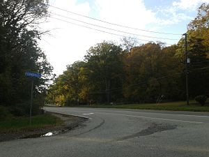 Virginia State Route 620 (Fairfax and Loudoun Counties) - Braddock Road where it forms the border of North Springfield