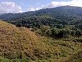 Brasil Rural - panoramio (4).jpg
