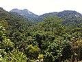 Brasil rural - panoramio (6).jpg
