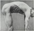 Braus 1921 85.png