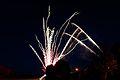 Bray Fireworks (6994395755).jpg