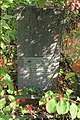Briceni Jewish Cemetery 74.JPG