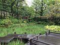 Bridge of Momijiyama Garden in Sumpu Castle Park 2.JPG