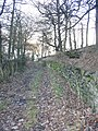 Bridleway leading up to Woodsome Road - geograph.org.uk - 94572.jpg