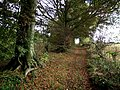 Bridleway to Haugh - geograph.org.uk - 581089.jpg