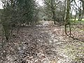 Bridleway to the east of Beeding's Copse - geograph.org.uk - 1194181.jpg