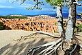 Bryce Canyon Inspiration Point.jpg