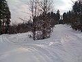 Bukovany - panoramio.jpg