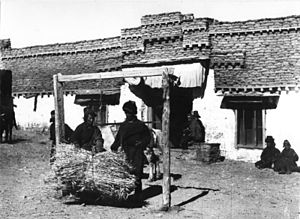 Pagri - Phari Dzong, 1938