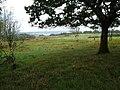 Burley Down - geograph.org.uk - 250127.jpg
