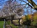 Bury St Edmunds - panoramio (15).jpg