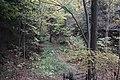 Buttermilk Falls - panoramio (15).jpg