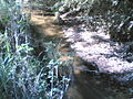 Córrego Itaim Mirim em Itu - panoramio.jpg