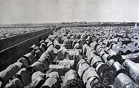 Cảnh lều chõng tại trường thi Nam Định, khoa thi Hương năm Canh Tý (1900).jpg