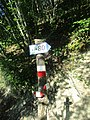 CAI 619 Segnavia 07.jpg