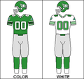 CFL Jersey SSK 1985.png