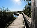 CINLB - 20120916 - Sentier 03.JPG