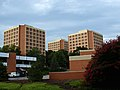 CU Horseshoe High-Rises Aug2010.jpg
