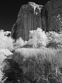Calf Creek (4080129817).jpg
