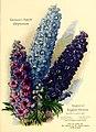 California gardening (1930) (20488389906).jpg