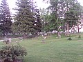 Cambridge Township Cemetery.JPG