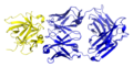 Canakinumab bound to IL-1β.png