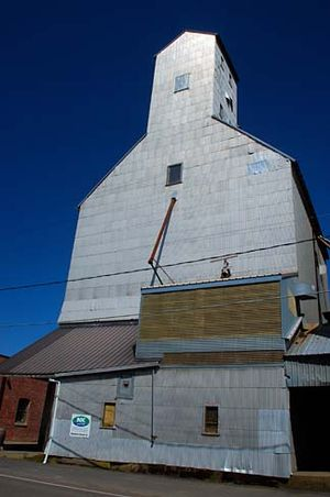 Yamhill County, Oregon - Grain elevator in Carlton, Yamhill County
