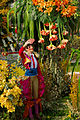 Carnaval de Nice - bataille de fleurs - 17.jpg