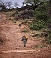 Carrying Water Home, Ethiopia (11561792496).jpg