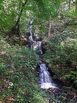 Cascade at Mosshouse Woods, Gnoll Country Park - geograph.org.uk - 1308670