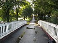 Cast Iron Footbridge - geograph.org.uk - 574835.jpg