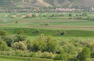 Castra of Hoghiz