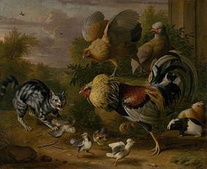 Cat among roosters.jpeg