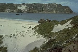 Channel Islands National Park - A beach in Channel Islands National Park