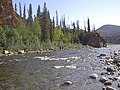 Charley River Water Quality Testing, Yukon-Charley Rivers, 2003 3 (05b5f230-64f4-4e60-b66a-e6f0cb4c322f).jpg