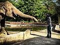 Cher Kaavan 1 Photo credit Zoobs .jpg