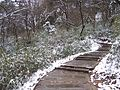 China - Emei Shan 20 - snow-covered steps (135963769).jpg