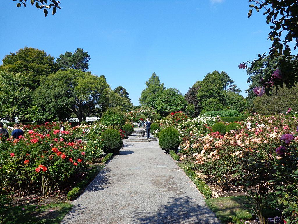 Christchurch Botanic Gardens 08