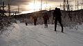 Christmas Ski (6573404969).jpg