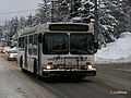 City Transit Flyer Douglas.jpg