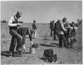 Civilian Conservation Corps - NARA - 195531.tif
