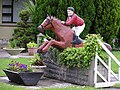 Close-up of the Horse Jump - geograph.org.uk - 443427.jpg