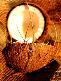 215px-Coconut_art_06.jpg
